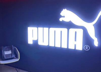 Oficinas Administrativas Corporativas Puma – Perú